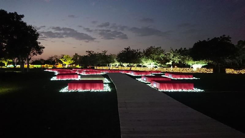 2018花在彰化~溪州公園看花賞燈鬧春宵7.jpg