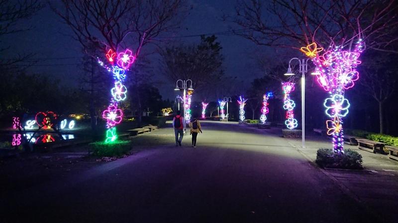 2018花在彰化~溪州公園看花賞燈鬧春宵9.jpg