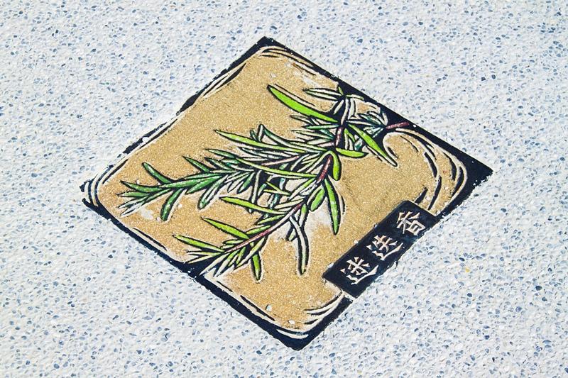 彰化秀水半日遊-馬興社區藥草植物園區36.jpg